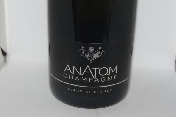 Anatom Blanc Vrai